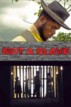 hd-Not a Slave