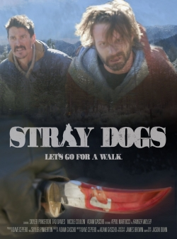 hd-Stray Dogs